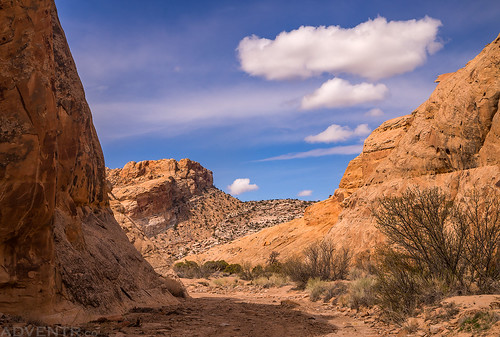 Ernie Canyon Wash | by IntrepidXJ