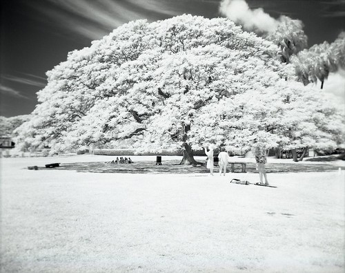 I think all my years with pinhole had made Infrared visualization easier. It's one less thing to worry.