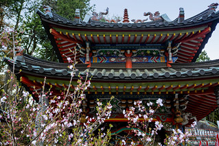 Cherry Blossom At Yamaguchi Kannon Temple | by El-Branden Brazil