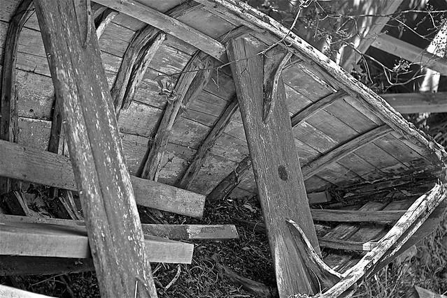 Monochrome Tomales Bay Memories