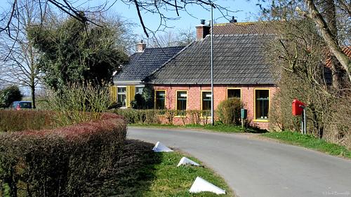 Groningen: Westerdijkshorn houses