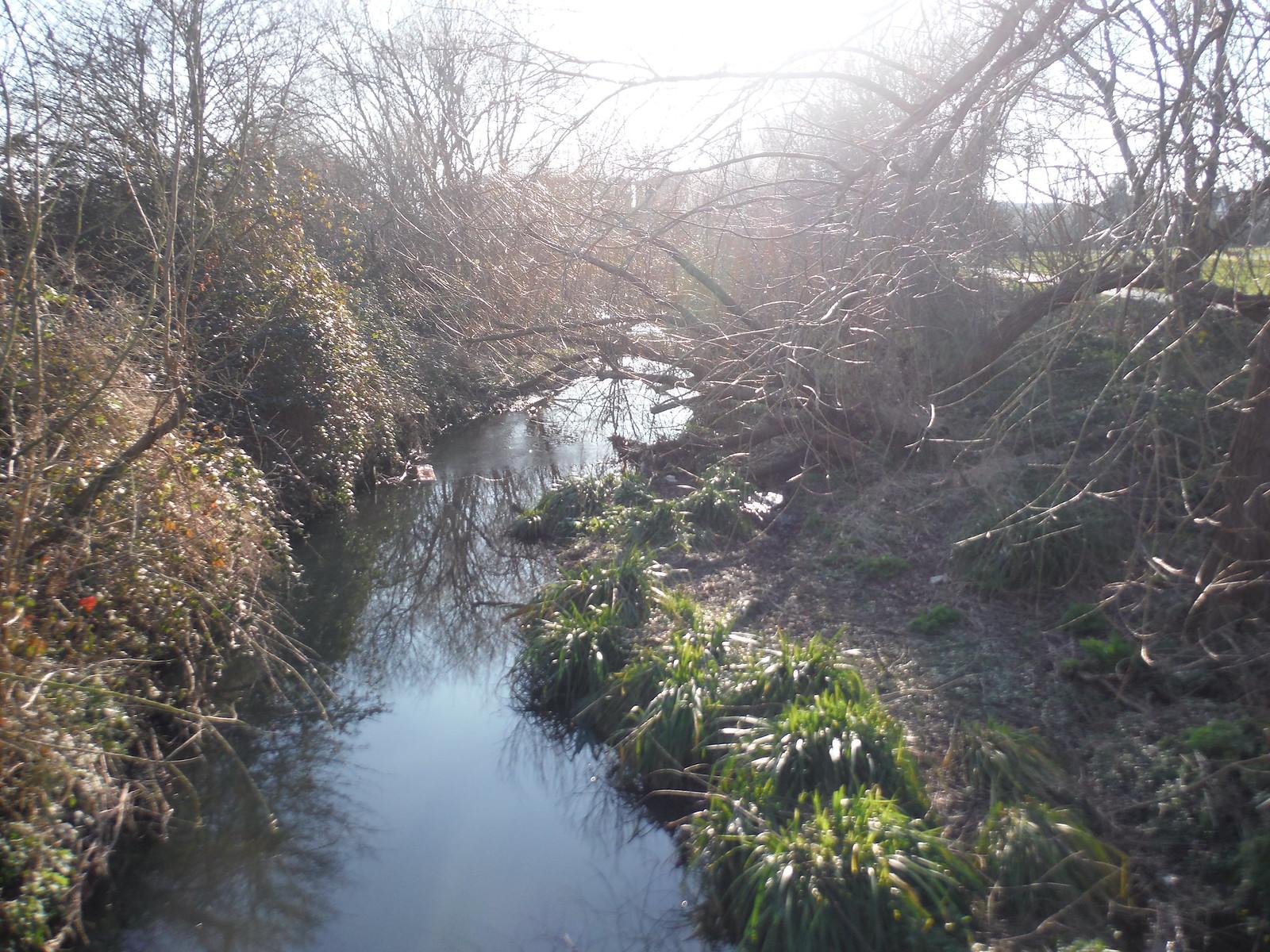 River Pool, The Riverview Walk, Sydenham SWC Short Walk 36 - Waterlink Way (Lower Sydenham to Greenwich)