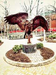 Temple U Owl