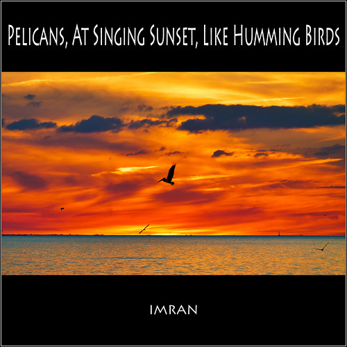 Lovers Cry Out In Unison At Dusk, As Pelican At Singing Sunset Hovers Like Humming Birds - IMRAN™ | by ImranAnwar
