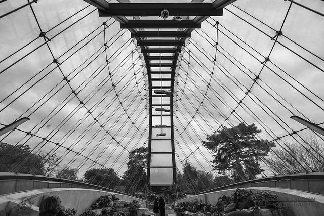 Kew Gardens - Orchid Festival