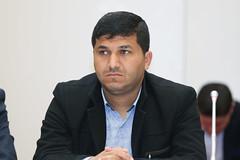أحمد الشحادي