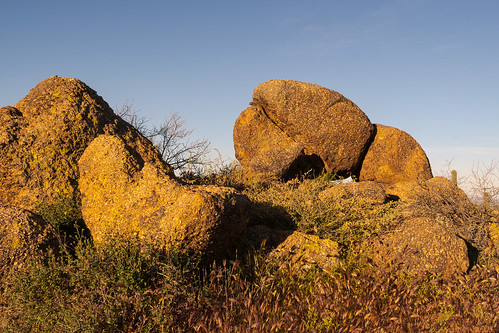 Lair of the Rock Squirrel   by rickcameron