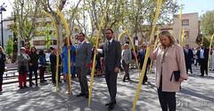 procesion-domingo-de-ramos-tomelloso-la-borriquilla-12