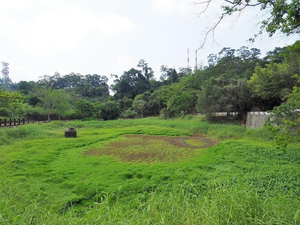 燕巢中寮山 (4)