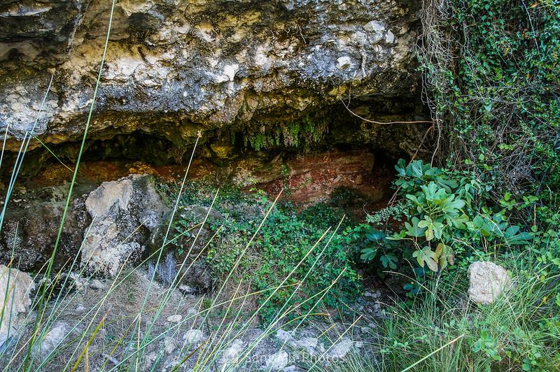 Font de la Cova de VIladellops