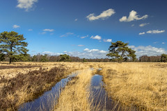 Hijkerveld Drenthe