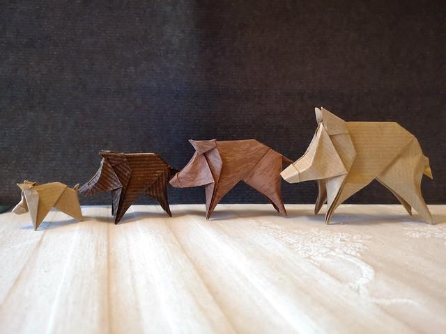 Little boar, cinghialetto - Stefano Borroni