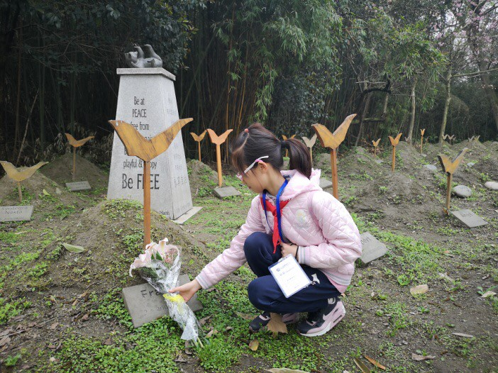 A student lays flowers on a bear's grave