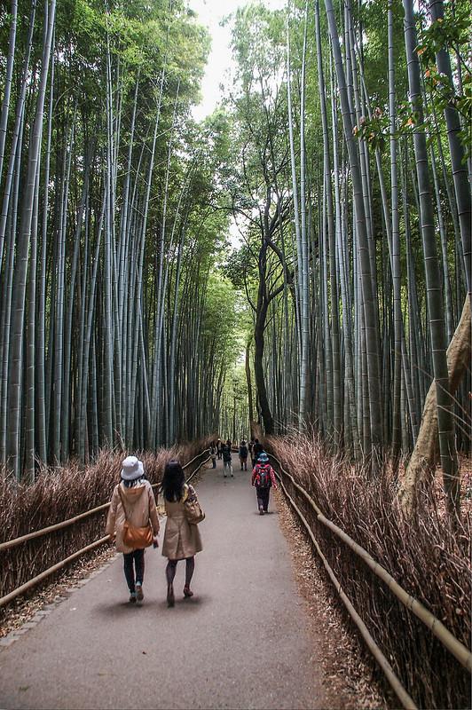 嵐山竹林小徑 2