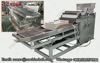 2019 New Peanut Dicing Chopping Machine