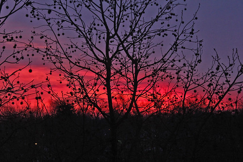 sunrise clouds red purple sunrisecolors trees bereaohio