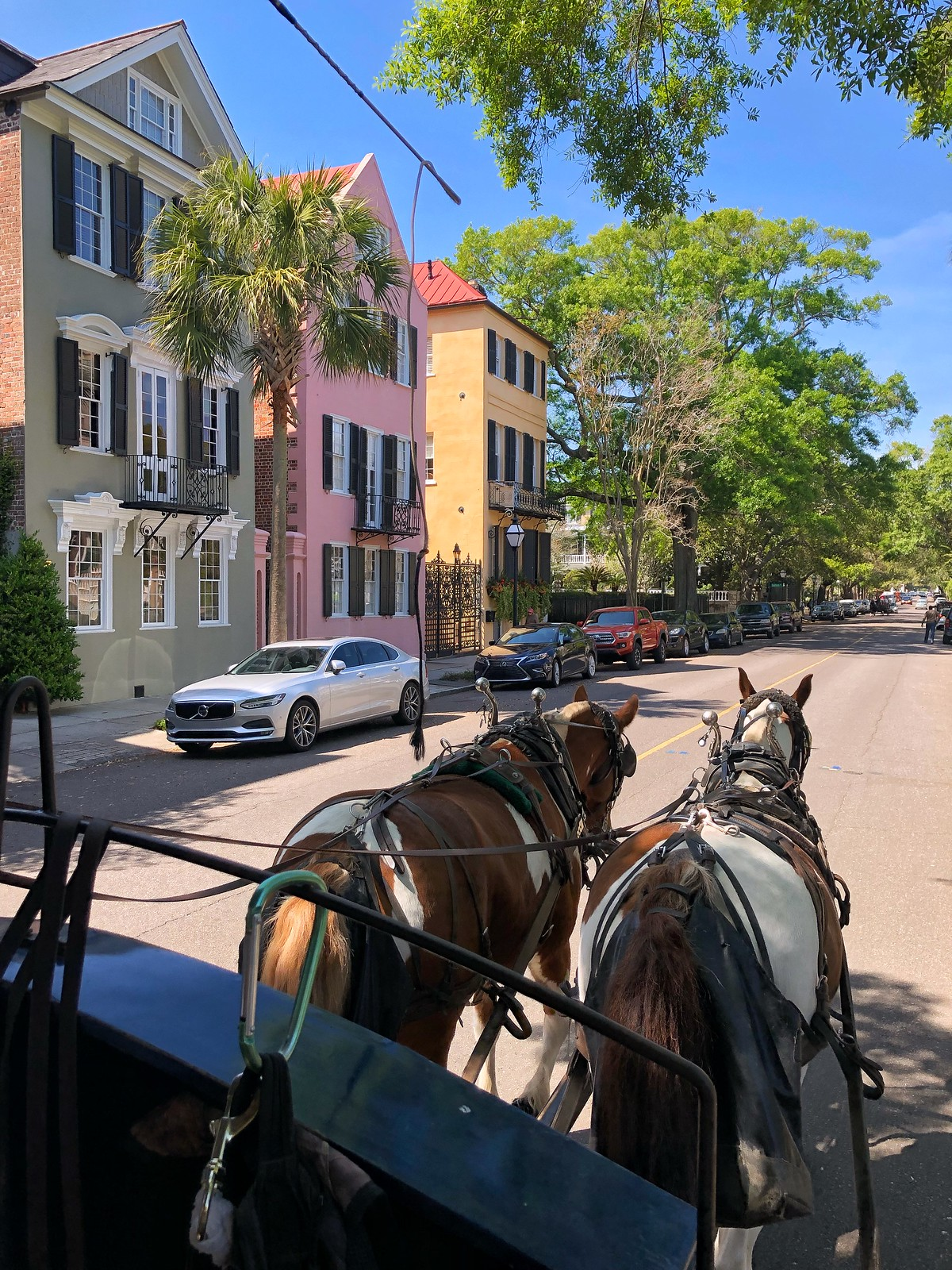 Palmetto Carriage Works Horse Tour | Most Beautiful Houses of Charleston | Colorful Houses of Charleston | What to do in Charleston | First Timer's Guide to 3 Days in Charleston South Carolina | Charleston Travel Guide | Best Things to do in Charleston | Best Places to visit in Charleston