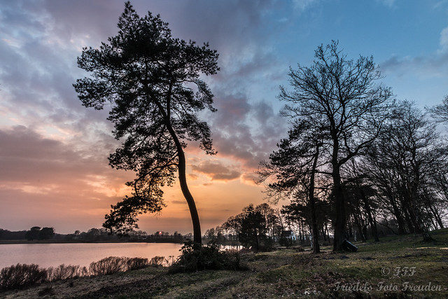 Evening mood at Wollingster See