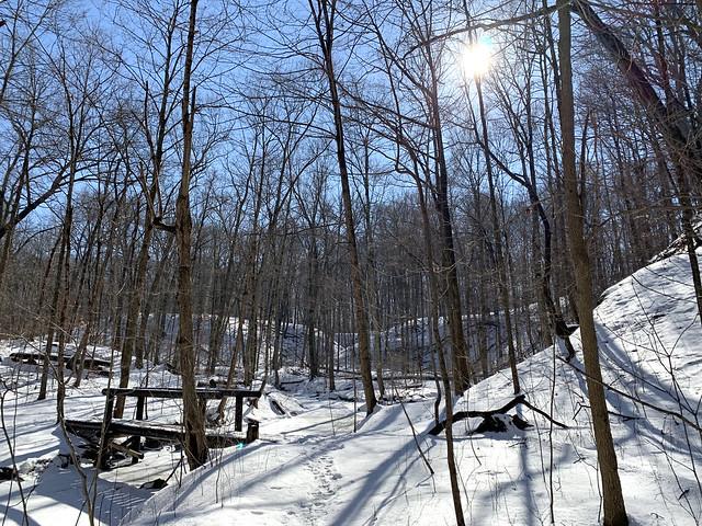 Snow-covered stream valley (Lazarus Run, Delaware County, Ohio, USA)