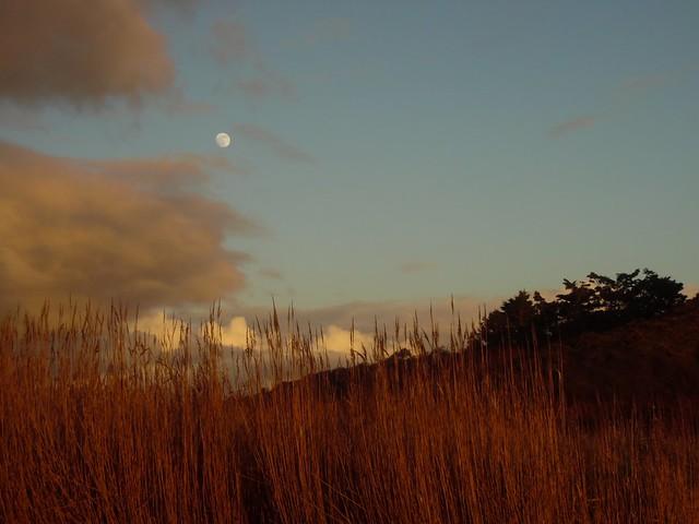 La lune au coucher du soleil... The moon at sunset... Couleurs naturelles... Natural colours..