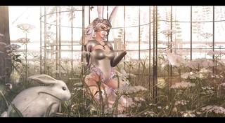 Some Bunny. | by Brandi Monroe