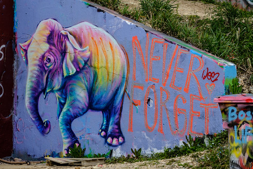 HOPE Outdoor Gallery, Austin | by Luke Robinson