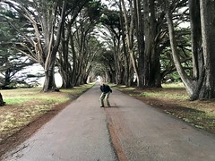 David preparing to jump on Cypress Tree Tunnel