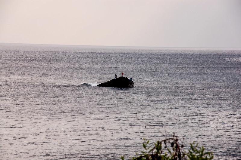 賴在南灣外海的無角水牛