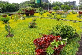Gardens of the Texaco Service Station, El Salvador