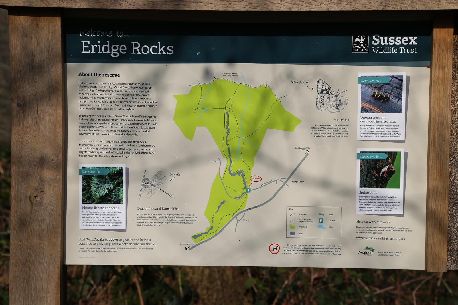 Eridge Rocks (1)