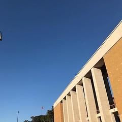 #Buongiorno Sapienza con una foto dei propilei di piazzale Aldo Moro 5 di @magdacrepas ・・・ #Repost: «#sky #architecture #roma #sapienza #bluesky #sunnyday #rationalism #building #skyporn #view #lookingup #university #campus #cielo #cieloazzurro #architett