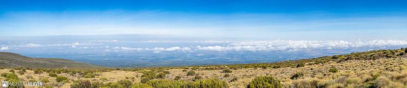 Kenya - 0933-Pano