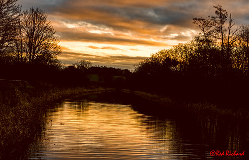 canal sunrise forthclyde water trees scotland nikon d800