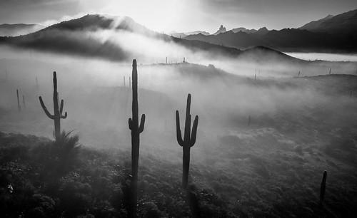 arizona cold fog snow sunrisemountain superstitionmountains things weather winter mesa unitedstatesofamerica us