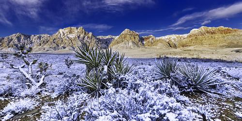 2019 america blm february mojavedesert nationalpark nevada places redrock usa canon earth landscape nature nearlasvegas sky snow winter hdr