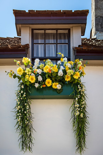 Flower Box | by Ed Rosack