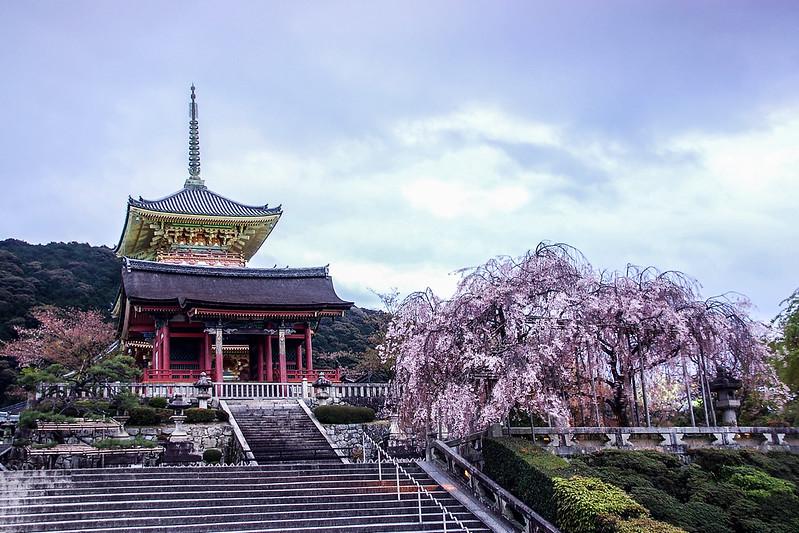 京都清水寺 (4)
