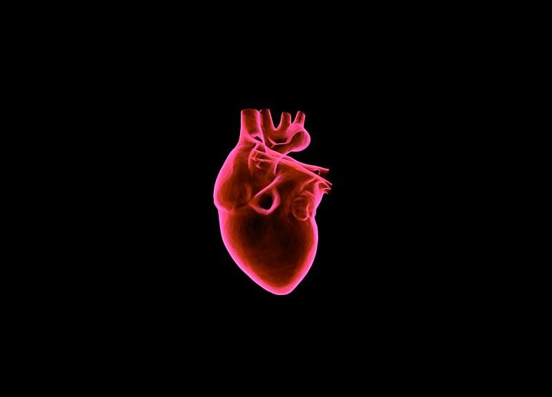 Обои сердце, арт, орган, темный фон, красный картинки на рабочий стол, фото скачать бесплатно