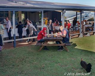 Christmas brunch with Brush-Turkey | by Jim Scarff