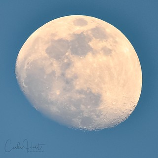 Early evening moon over my house, Vernon, BC   by carlahuntphotography