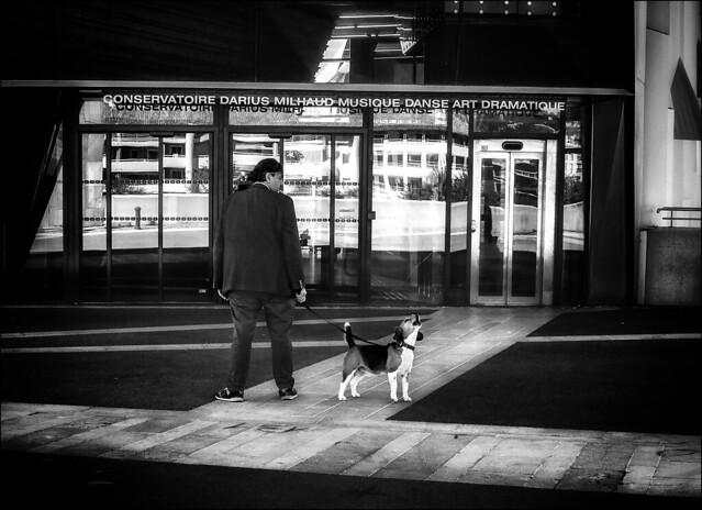 Le chien qui n'aimait pas la musique... /The dog who did'nt like music...