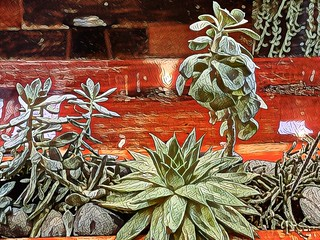 Succulents-Table_Mod_1   by Doctor Free