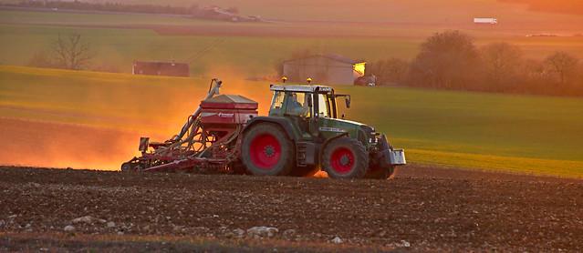 soleil couchant sur le monde agricole