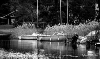Lac de Lacanau | by Sébastien Lallemand