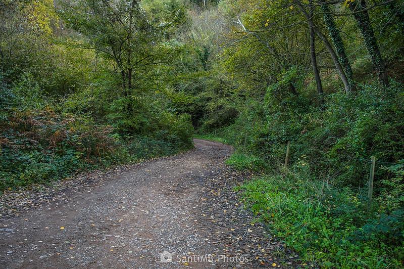 Camí de les Olletes cerca del Pla d'en Xurri
