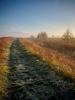 Footpath, Upton Marshes | by AMcUK