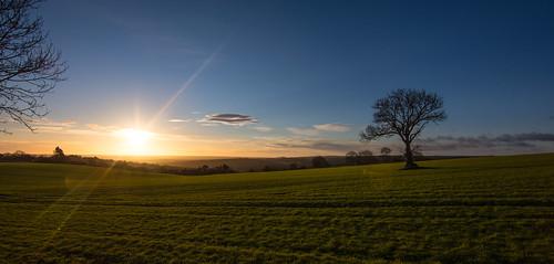 nikon d7200 tokina1120mmatx tokina tree sunrise sunburst peakdistrictderbyshire peakdistrict green holmesfield 1120mmproatx11 1120mm scenicsnotjustlandscapes landscapes landscapephotography