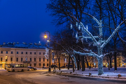 saintpetersburg landscape winter nature city outdoor town snow morning blue colorful road tree orange street sunrise russia style design architecture yellow frost sky landscapes outdoors petersburg russian st leningradoblast ru