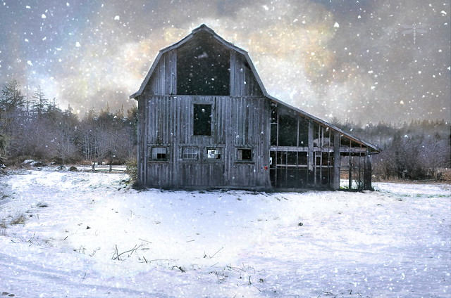 the barn is where the best memories are made . . .