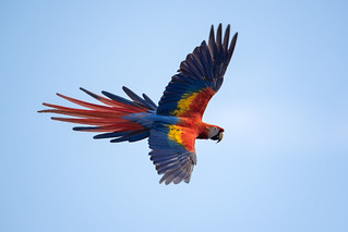 Rainbow in flight | by Rob & Amy Lavoie